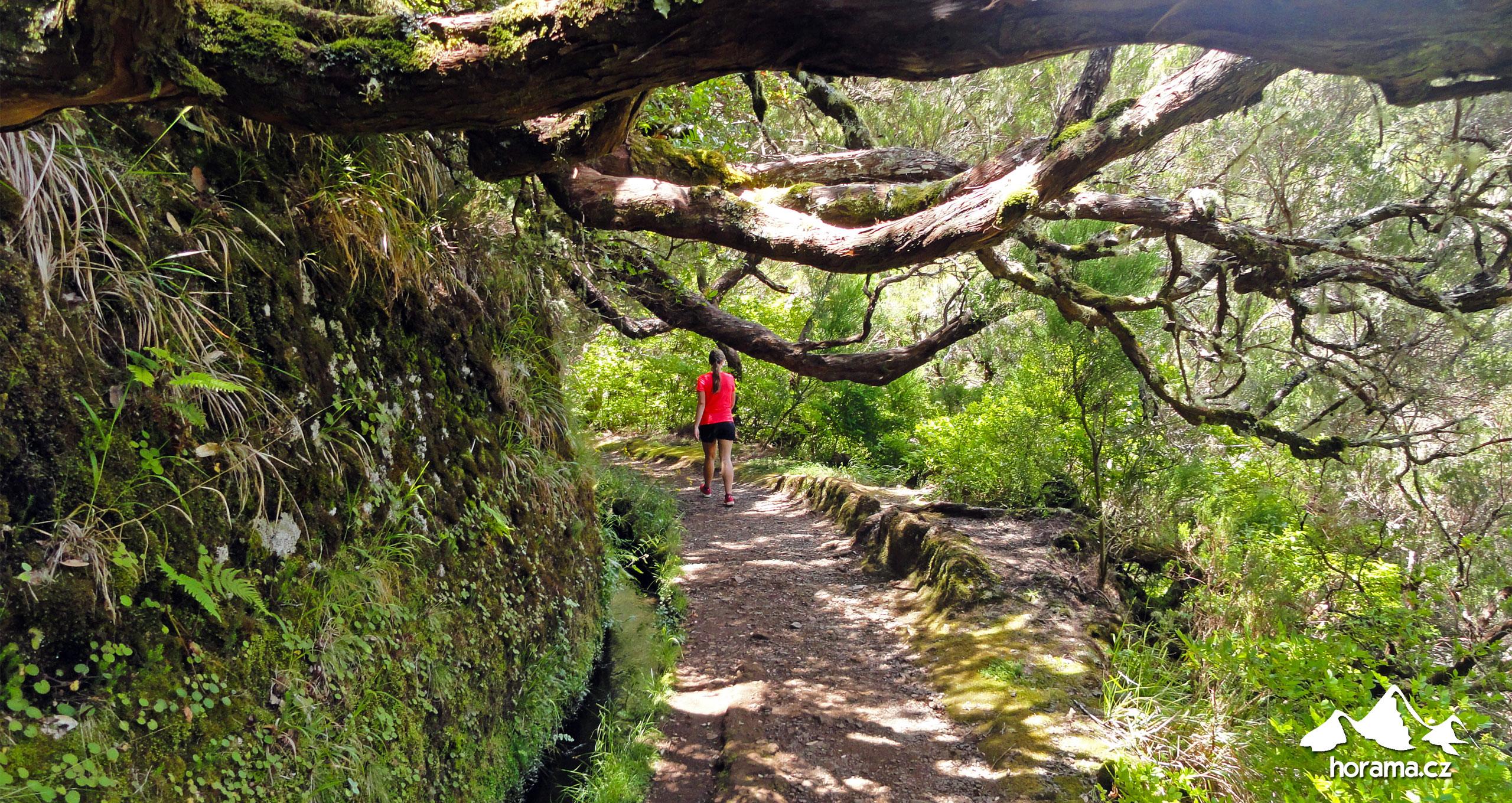 25 Fontes Rabacal Madeira
