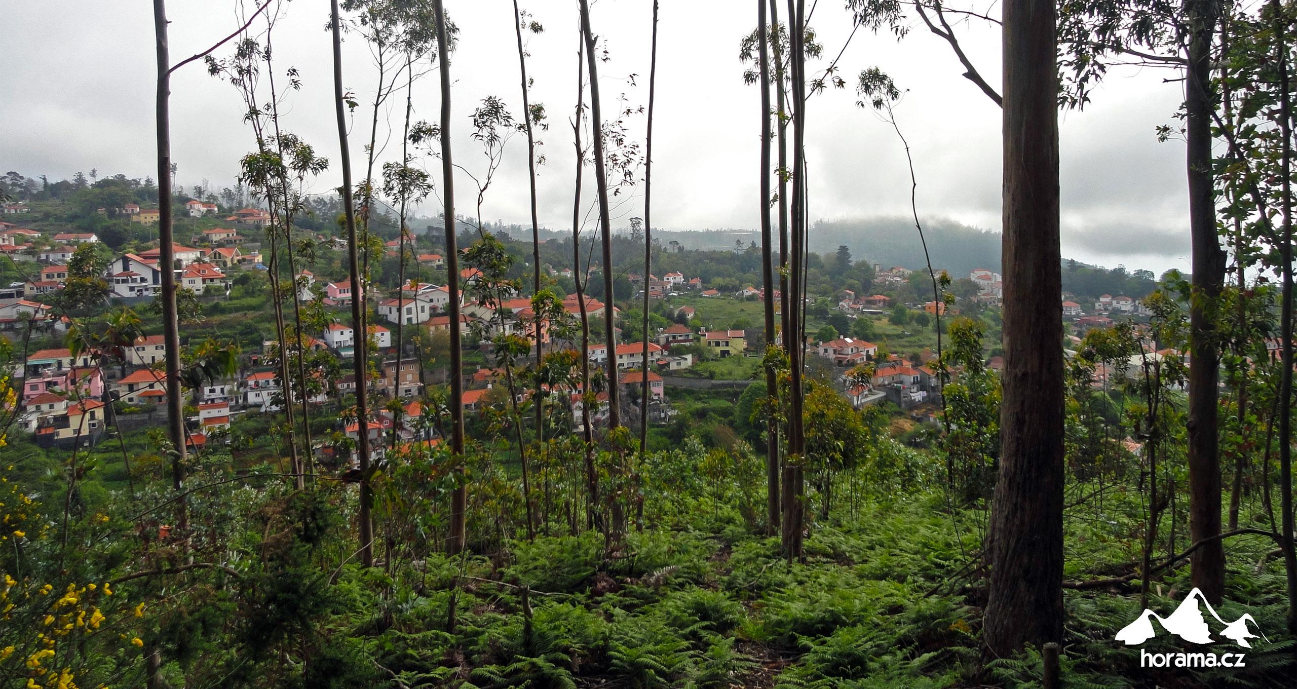 Camacha Madeira