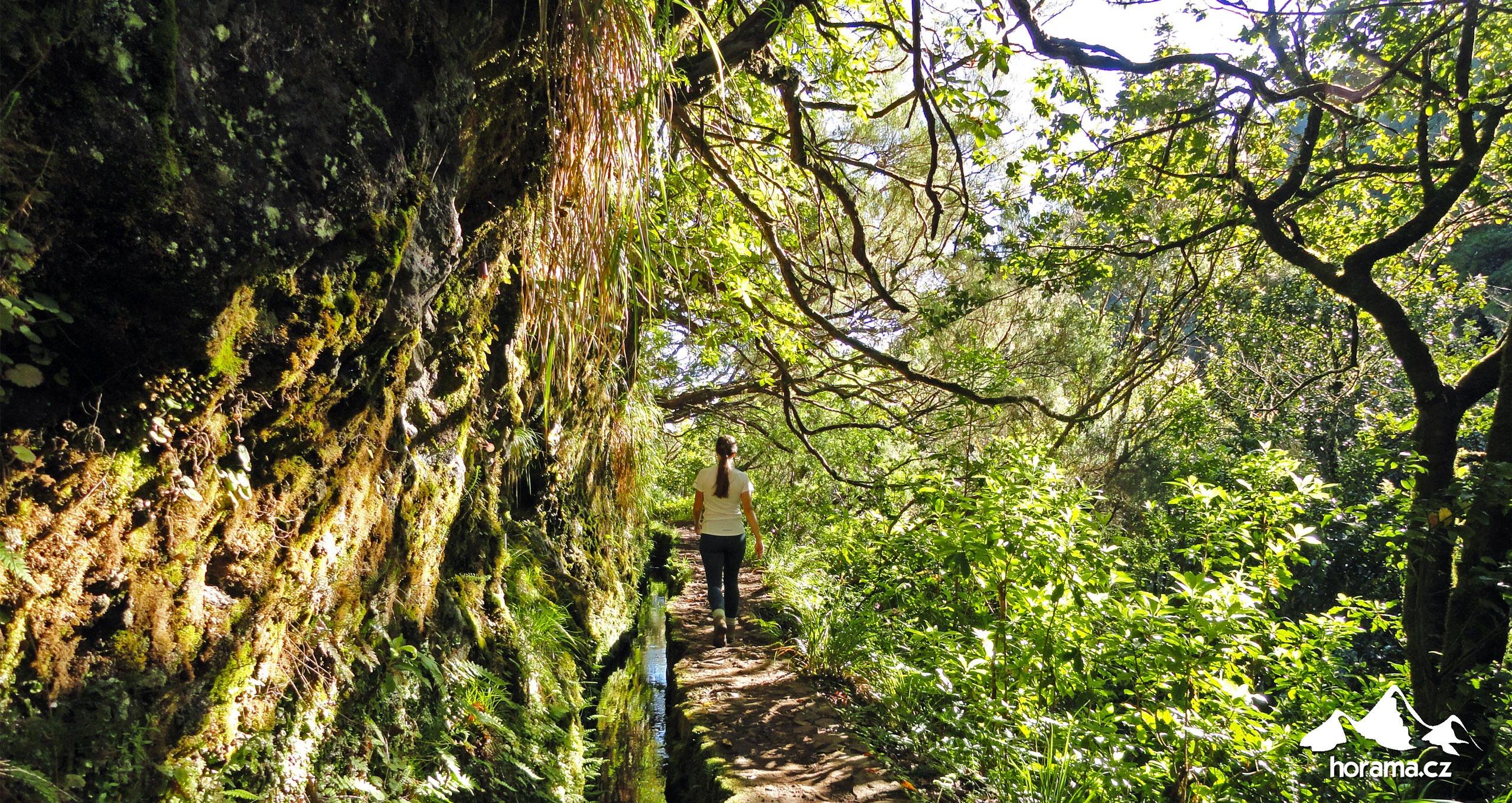 Vereda Da Ilha Madeira