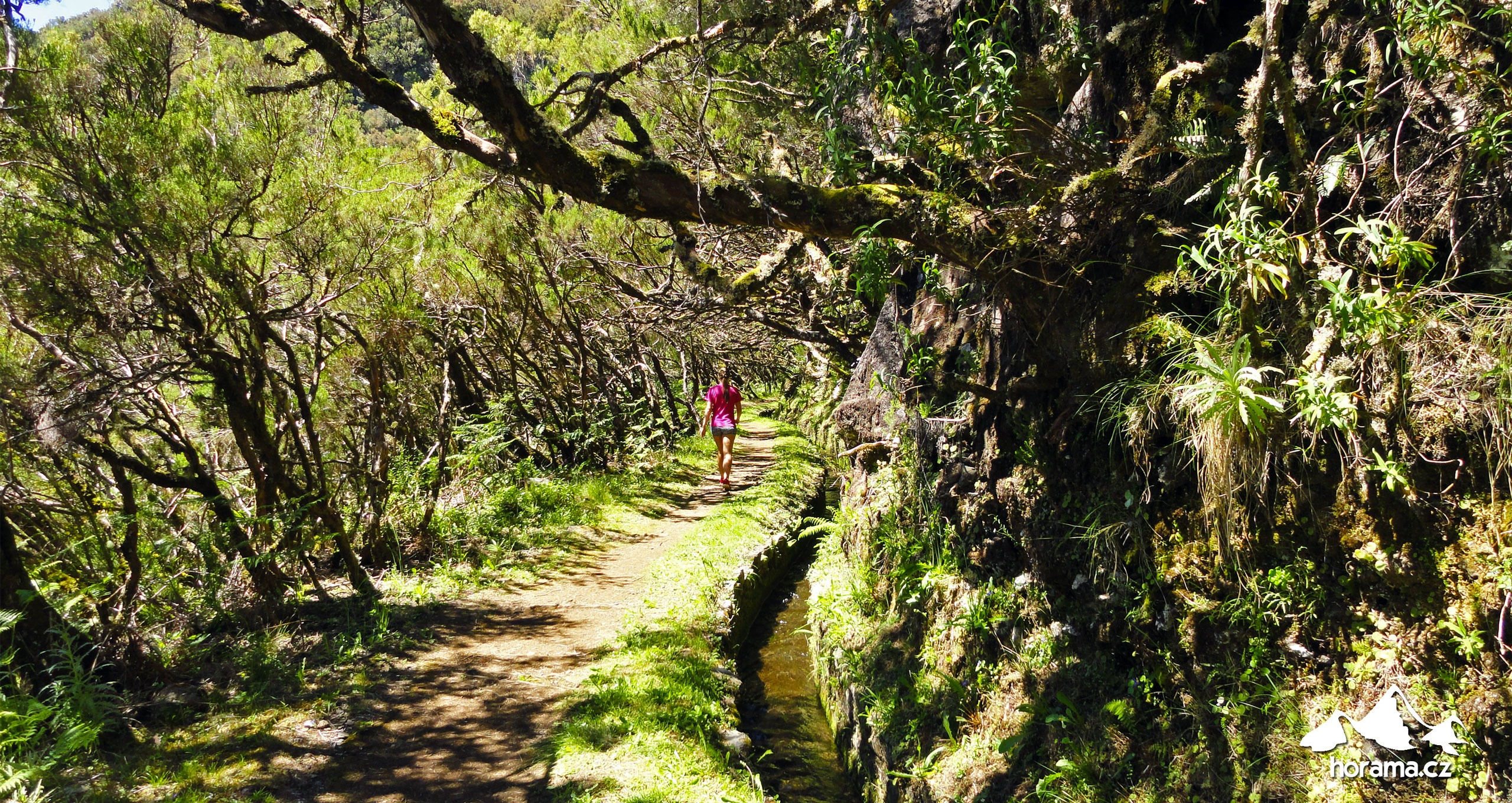 Levada Pinaculo Boca Da Encumeada Madeira