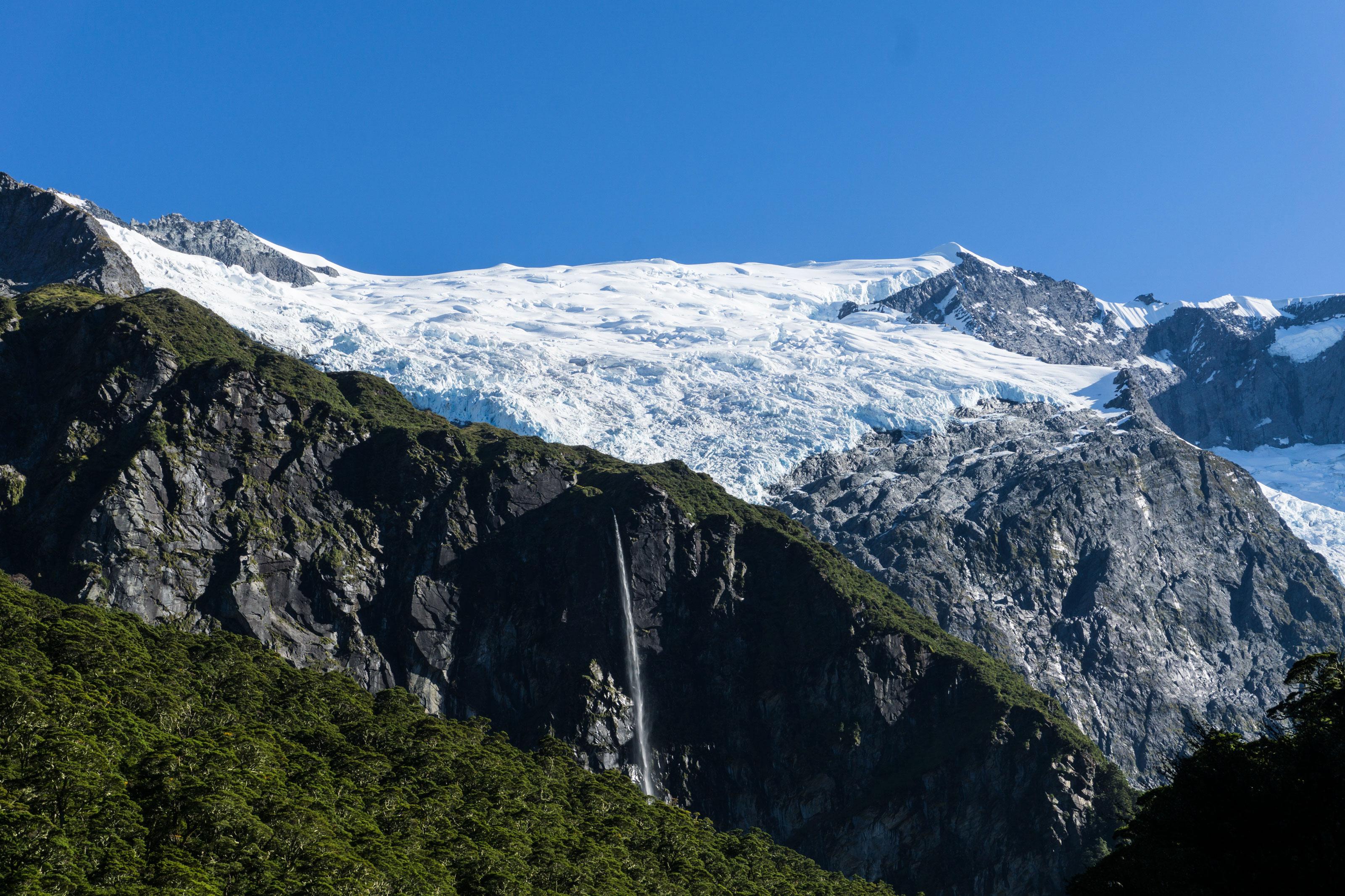 Pralesem Jižních Alp pod ledovec Rob Roy a Mount Aspiring