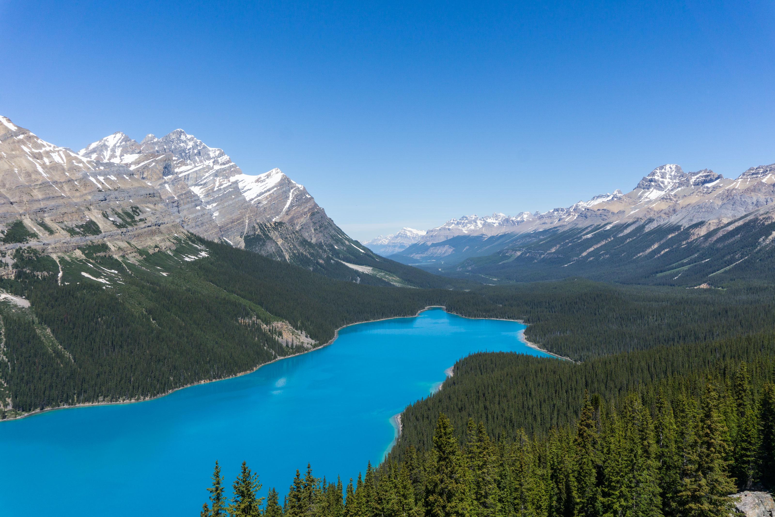 Vzhůru do Jasperu přes Peyto Lake, Parker Ridge a Athabasca Glacier