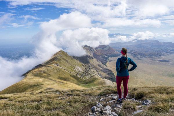 Stovka kamzíků na travnatých svazích Monte Camicia v Apeninách